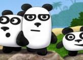 3-pandy-2