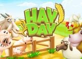 ferma-hay-day