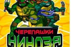 kartochki-cherepashki-nindzya