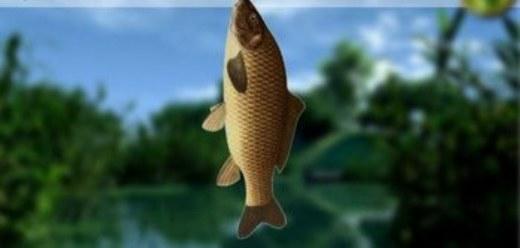 Игры рыбалка