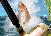 okhota-i-rybalka