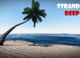 stranded-dip