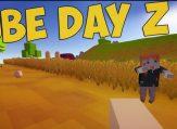 cube-day-z