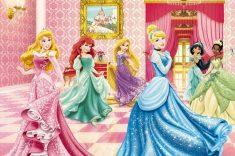 mir-princess-disneya