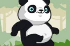 priklyuchenie-pandy