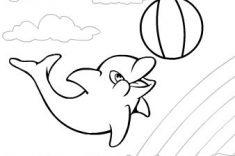 raskraska-delfin